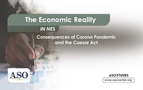 The Economic Reality in NES (Consequences of Corona Pandemic and Caesar Act)