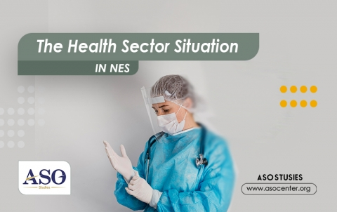The Health Sector Situation in NES