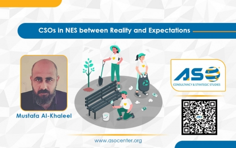 CSOs in NES Between Reality and Expectations