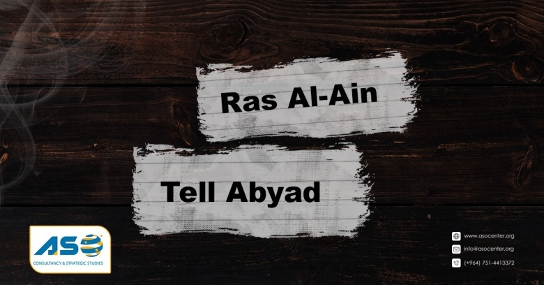 A Letter to the United Nations and International Organizations On the Passage of One-Year of the Occupation of SereKaniye / Ras Al-Ain and Gire Spi/ Tal Abyad